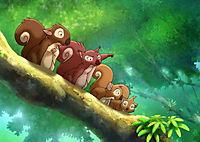 Kleiner Dodo - Der Film - Produktdetailbild 4