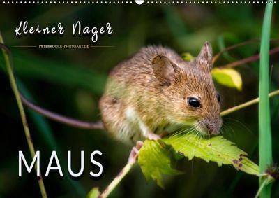 Kleiner Nager - Maus (Wandkalender 2019 DIN A2 quer), Peter Roder