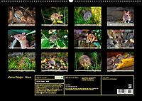 Kleiner Nager - Maus (Wandkalender 2019 DIN A2 quer) - Produktdetailbild 13