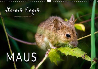 Kleiner Nager - Maus (Wandkalender 2019 DIN A3 quer), Peter Roder