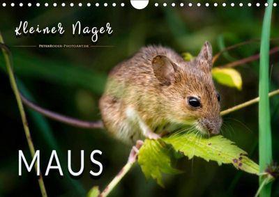 Kleiner Nager - Maus (Wandkalender 2019 DIN A4 quer), Peter Roder