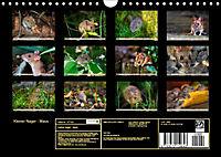Kleiner Nager - Maus (Wandkalender 2019 DIN A4 quer) - Produktdetailbild 13