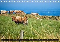 Klippen und Meer. Fantastische Ausblicke auf den Inseln im Ärmelkanal (Tischkalender 2019 DIN A5 quer) - Produktdetailbild 6