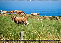 Klippen und Meer. Fantastische Ausblicke auf den Inseln im Ärmelkanal (Wandkalender 2019 DIN A2 quer) - Produktdetailbild 6