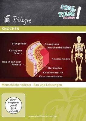 Knochen, 1 DVD
