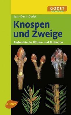 Knospen und Zweige, Jean-Denis Godet