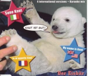 Knut ist Gut - International Versions, Der Eisbär