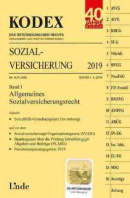 KODEX Sozialversicherung 2019 - Elisabeth Brameshuber pdf epub
