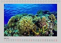 Korallen-Riffe Taucherträume (Tischkalender 2019 DIN A5 quer) - Produktdetailbild 4