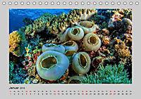Korallen-Riffe Taucherträume (Tischkalender 2019 DIN A5 quer) - Produktdetailbild 7