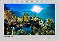 Korallen-Riffe Taucherträume (Tischkalender 2019 DIN A5 quer) - Produktdetailbild 9