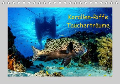 Korallen-Riffe Taucherträume (Tischkalender 2019 DIN A5 quer), Sascha Caballero