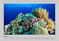 Korallen-Riffe Taucherträume (Tischkalender 2019 DIN A5 quer) - Produktdetailbild 5