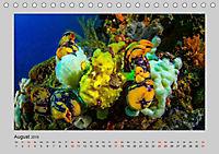 Korallen-Riffe Taucherträume (Tischkalender 2019 DIN A5 quer) - Produktdetailbild 8