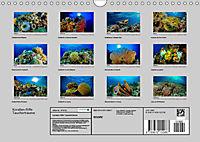 Korallen-Riffe Taucherträume (Wandkalender 2019 DIN A4 quer) - Produktdetailbild 13