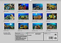 Korallen-Riffe Taucherträume (Wandkalender 2019 DIN A3 quer) - Produktdetailbild 13