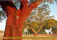 Korkeichen (Wandkalender 2019 DIN A2 quer) - Produktdetailbild 9