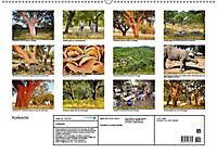 Korkeichen (Wandkalender 2019 DIN A2 quer) - Produktdetailbild 13
