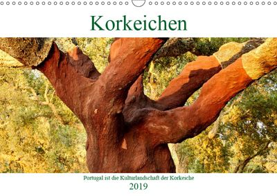 Korkeichen (Wandkalender 2019 DIN A3 quer), Andreas Riedmiller