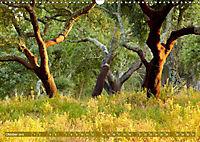 Korkeichen (Wandkalender 2019 DIN A3 quer) - Produktdetailbild 10