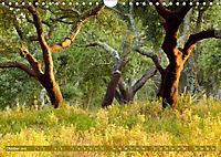 Korkeichen (Wandkalender 2019 DIN A4 quer) - Produktdetailbild 10
