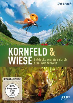 Kornfeld & Wiese - Entdeckungsreise durch eine Wunderwelt, Jan Haft