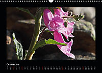Korsika - Insel der Träume (Wandkalender 2019 DIN A3 quer) - Produktdetailbild 10