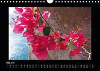 Korsika - Insel der Träume (Wandkalender 2019 DIN A4 quer) - Produktdetailbild 5