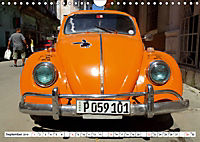 "Krabbeltier mit Kultstatus - Eine Auto-Legende ""Made in Germany"" (Wandkalender 2019 DIN A4 quer) - Produktdetailbild 9"