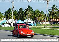 "Krabbeltier mit Kultstatus - Eine Auto-Legende ""Made in Germany"" (Wandkalender 2019 DIN A4 quer) - Produktdetailbild 12"