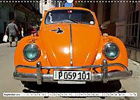 "Krabbeltier mit Kultstatus - Eine Auto-Legende ""Made in Germany"" (Wandkalender 2019 DIN A3 quer) - Produktdetailbild 9"