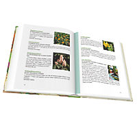 Kräuter Rezeptbuch - Produktdetailbild 2