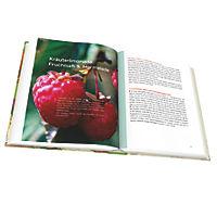 Kräuter Rezeptbuch - Produktdetailbild 4