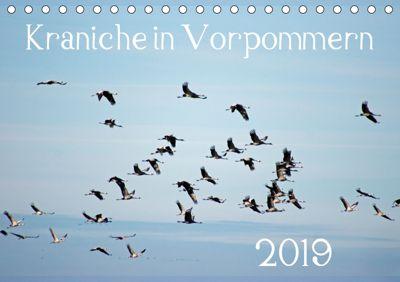 Kraniche in Vorpommern (Tischkalender 2019 DIN A5 quer), Siegfried Reinhold