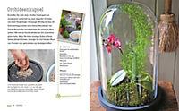 Kreativ mit Pflanzen - Produktdetailbild 4