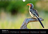 KRUGER WILDLIFE (Wall Calendar 2019 DIN A4 Landscape) - Produktdetailbild 10
