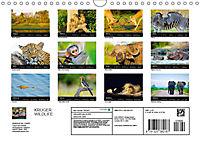 KRUGER WILDLIFE (Wall Calendar 2019 DIN A4 Landscape) - Produktdetailbild 13