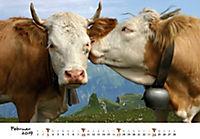 Kühe 2019 - Produktdetailbild 2