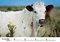 Kühe 2019 - Produktdetailbild 11