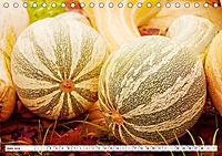 Kürbisse - so farbenfroh (Tischkalender 2019 DIN A5 quer) - Produktdetailbild 6