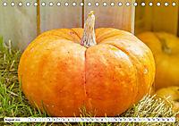 Kürbisse - so farbenfroh (Tischkalender 2019 DIN A5 quer) - Produktdetailbild 8