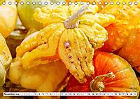Kürbisse - so farbenfroh (Tischkalender 2019 DIN A5 quer) - Produktdetailbild 11