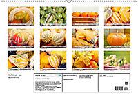 Kürbisse - so farbenfroh (Wandkalender 2019 DIN A2 quer) - Produktdetailbild 13