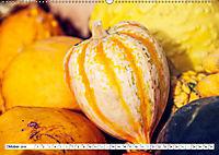 Kürbisse - so farbenfroh (Wandkalender 2019 DIN A2 quer) - Produktdetailbild 10