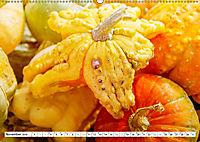 Kürbisse - so farbenfroh (Wandkalender 2019 DIN A2 quer) - Produktdetailbild 11