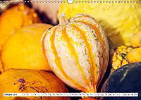 Kürbisse - so farbenfroh (Wandkalender 2019 DIN A3 quer) - Produktdetailbild 10