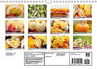 Kürbisse - so farbenfroh (Wandkalender 2019 DIN A4 quer) - Produktdetailbild 13