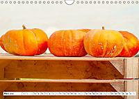 Kürbisse - so farbenfroh (Wandkalender 2019 DIN A4 quer) - Produktdetailbild 3