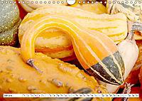 Kürbisse - so farbenfroh (Wandkalender 2019 DIN A4 quer) - Produktdetailbild 7