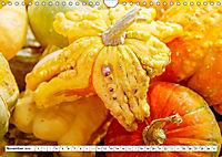 Kürbisse - so farbenfroh (Wandkalender 2019 DIN A4 quer) - Produktdetailbild 11